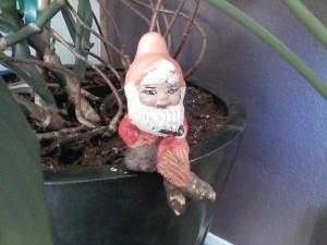 Grandma's Knome